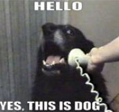 The Phone Dog: Hilarious Meme Remixes (9 Pics)