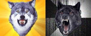 Return of the Wolfpack: Top 15 Courage and Insanity Wolf Memes