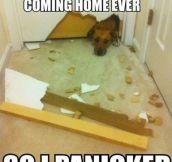 I panicked…