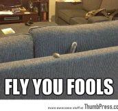 Catdalf, no!