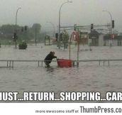 Must… Return… Shopping… Cart
