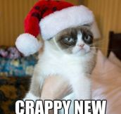 Grumpy cat's holiday wishes…