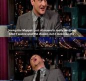 Jason Segel on The Muppets…