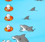 Shark is coming!
