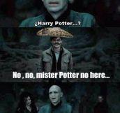 Not Harry Potter
