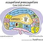 OCCUPATIONAL PREOCCUPATIONS.