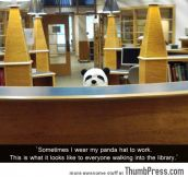OH HI PANDA!