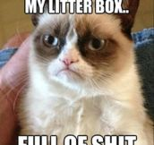 A lot like my litter box