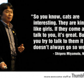 Cats are like girls