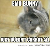 Emo bunny