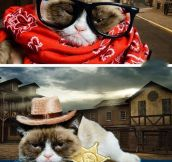 GRUMPY CAT PLAYS DRESS UP.