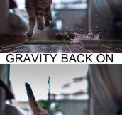 Gravity on & off