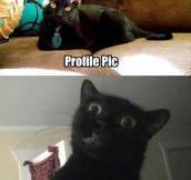Profile pic vs. Tagged photo