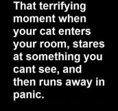 THAT TERRIFYING MOMENT…