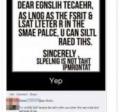 Dear English Teacher…