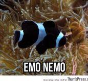 Emo Nemo