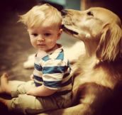 27 Friendly Dogs That Enjoy Being Around Kids