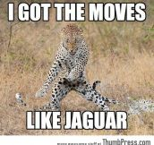 I GOT THE MOVES LIKE JAGUAR.