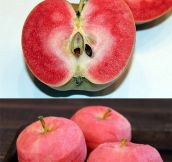 PINK PEARL APPLE.