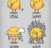 The Seasons…