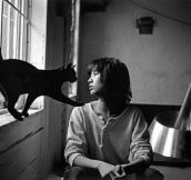 8 Famous Artists Photographed With Their Cats