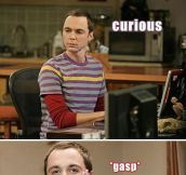 The Many Faces Of Sheldon Cooper (13 Pics)