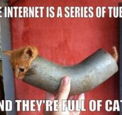 The internet is series of tubes