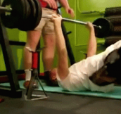 I Didn't See That Coming: 12 Hilariously Unexpected GIFs