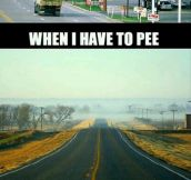 Peeing on road trips