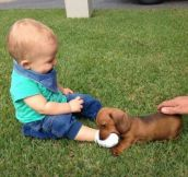 Kids + Animals = A Winning Combination Of Cute