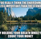 The environment vs. the economy…