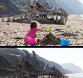 Dragon head found…