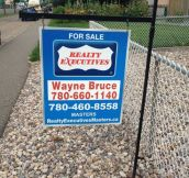 Because he's the hero this neighborhood deserves…