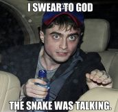Harry Potter has seen things…