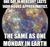 One day in Mercury…