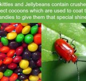 Never eating skittles again…