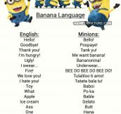 Want to understand Minions?
