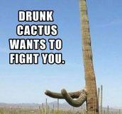 Drunk cactus…
