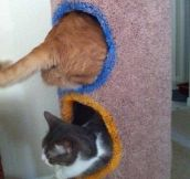 Playing with portals…