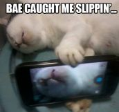 Bae caught me slippin'…