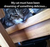 Delicious dreams…