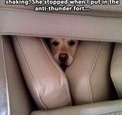 The anti-thunder fort…