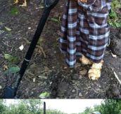 Working the farm…