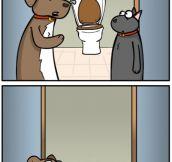 Listen new dog…
