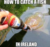 Fishing in Ireland…