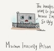 Maximum insecurity…