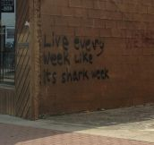 Motivational graffiti…