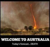 Living in Australia…