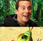 Bear Grylls vs. A Bug's Life…