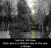 365 slices of Britain…